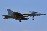 AkilaYさんが、厚木飛行場で撮影したアメリカ海軍 EA-18G Growlerの航空フォト(写真)