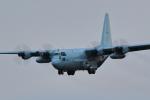 AkilaYさんが、厚木飛行場で撮影した海上自衛隊 C-130Rの航空フォト(写真)