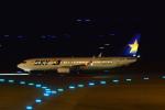 shining star ✈さんが、那覇空港で撮影したスカイマーク 737-86Nの航空フォト(写真)