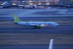 ぶるんねるさんが、羽田空港で撮影したソラシド エア 737-81Dの航空フォト(写真)