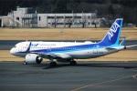 DVDさんが、成田国際空港で撮影した全日空 A320-271Nの航空フォト(写真)