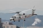 ぱぴぃさんが、名古屋飛行場で撮影した海上自衛隊 SH-60Kの航空フォト(写真)