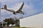 パンダさんが、成田国際空港で撮影した日本航空 787-846の航空フォト(写真)