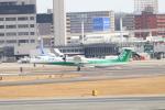 juniors71さんが、伊丹空港で撮影したANAウイングス DHC-8-402Q Dash 8の航空フォト(写真)