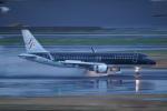 pringlesさんが、羽田空港で撮影したスターフライヤー A320-214の航空フォト(写真)