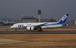 ayakahanさんが、伊丹空港で撮影した全日空 787-881の航空フォト(写真)