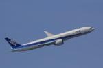 レンタくんさんが、羽田空港で撮影した全日空 777-381/ERの航空フォト(写真)