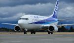 HS888さんが、鹿児島空港で撮影したANAウイングス 737-54Kの航空フォト(写真)