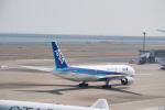 J-birdさんが、羽田空港で撮影した全日空 777-281の航空フォト(写真)