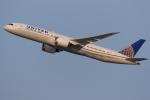 多摩川崎2Kさんが、羽田空港で撮影したユナイテッド航空 787-9の航空フォト(写真)