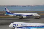 せぷてんばーさんが、羽田空港で撮影した全日空 777-281の航空フォト(写真)