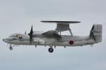 shining star ✈さんが、那覇空港で撮影した航空自衛隊 E-2C Hawkeyeの航空フォト(写真)