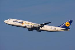 ぱん_くまさんが、羽田空港で撮影したルフトハンザドイツ航空 747-830の航空フォト(写真)