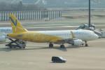 taka2217さんが、成田国際空港で撮影したバニラエア A320-214の航空フォト(写真)
