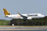 ぎんじろーさんが、成田国際空港で撮影したタイガーエア 台湾 A320-232の航空フォト(写真)