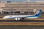 ぎんじろーさんが、羽田空港で撮影した全日空 787-881の航空フォト(写真)