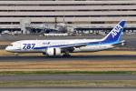 Timothyさんが、羽田空港で撮影した全日空 787-881の航空フォト(写真)
