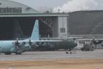 ぱぴぃさんが、名古屋飛行場で撮影した航空自衛隊 C-130H Herculesの航空フォト(写真)
