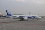 B737-781さんが、那覇空港で撮影した全日空 787-881の航空フォト(写真)