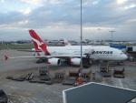 ラムダΛさんが、シドニー国際空港で撮影したカンタス航空 A380-842の航空フォト(写真)