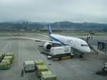 ラムダΛさんが、台北松山空港で撮影した全日空 787-881の航空フォト(写真)
