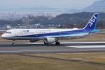 神宮寺ももさんが、高松空港で撮影した全日空 A321-211の航空フォト(写真)