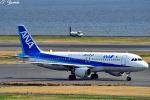 吉田高士さんが、羽田空港で撮影した全日空 A320-211の航空フォト(写真)