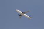 サチさんが、ドバイ国際空港で撮影したシリア・アラブ航空 A320-232の航空フォト(写真)