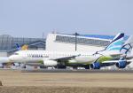 雲霧さんが、成田国際空港で撮影したエアプサン A320-232の航空フォト(写真)