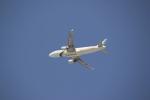 サチさんが、ドバイ国際空港で撮影したパキスタン国際航空 A320-216の航空フォト(写真)