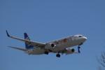 GRX135さんが、新千歳空港で撮影した全日空 737-881の航空フォト(写真)