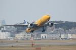 ○maru○さんが、福岡空港で撮影した全日空 777-281/ERの航空フォト(写真)