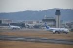 空が大好き!さんが、伊丹空港で撮影した全日空 787-881の航空フォト(写真)