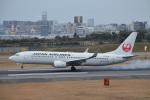 空が大好き!さんが、伊丹空港で撮影した日本航空 737-846の航空フォト(写真)