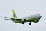 saoya_saodakeさんが、成田国際空港で撮影したジンエアー 737-86Nの航空フォト(写真)