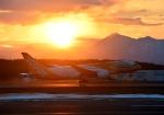 新千歳空港 - New Chitose Airport [CTS/RJCC]で撮影されたスクート - Scoot [TZ/SCO]の航空機写真