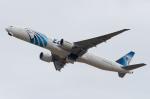 ぎんじろーさんが、成田国際空港で撮影したエジプト航空 777-36N/ERの航空フォト(写真)