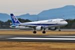 left eyeさんが、高松空港で撮影した全日空 A320-211の航空フォト(写真)