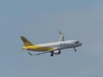 bobochanさんが、函館空港で撮影したバニラエア A320-214の航空フォト(写真)