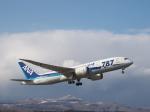 bobochanさんが、函館空港で撮影した全日空 787-881の航空フォト(写真)