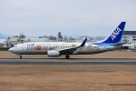 sky77さんが、伊丹空港で撮影した全日空 737-881の航空フォト(写真)