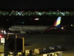 Jyu--sho---さんが、成田国際空港で撮影したアシアナ航空 A321-231の航空フォト(写真)