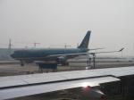 Jyu--sho---さんが、上海浦東国際空港で撮影したベトナム航空 A330-223の航空フォト(写真)