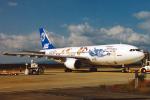 菊池 正人さんが、長崎空港で撮影した日本エアシステム A300B2K-3Cの航空フォト(写真)