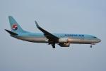 よしポンさんが、成田国際空港で撮影した大韓航空 737-8BKの航空フォト(写真)