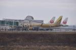 Cスマイルさんが、花巻空港で撮影したフジドリームエアラインズ ERJ-170-200 (ERJ-175STD)の航空フォト(写真)