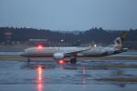 Daidai☆彡さんが、成田国際空港で撮影したエティハド航空 787-9の航空フォト(写真)