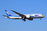 青帯さんが、成田国際空港で撮影した全日空 787-881の航空フォト(写真)