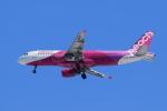 noriphotoさんが、新千歳空港で撮影したピーチ A320-214の航空フォト(写真)