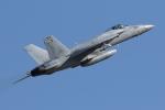 isiさんが、厚木飛行場で撮影したアメリカ空軍 F/A-18E Super Hornetの航空フォト(写真)